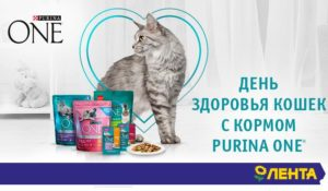 Акция Purina One в Ленте